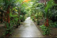 evergreen lodge path 