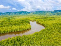 sierpe wetlands aerial views   - Costa Rica