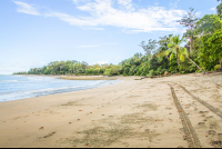tamales beach stretch
