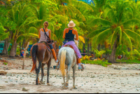 horseback riding santa teresa Edit