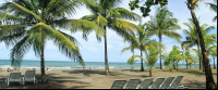 turtle beach lodge beach 