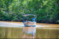 boat on a tour in the tamarindo estuary