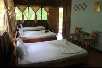 turtle beach lodge rooms 