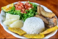 tilapia filet with patacones boild cassava rice and salad lunch waterfall tour manuel antonio