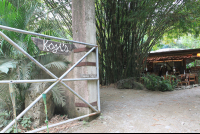koji's front sign 
