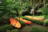 evergreen lodge kayaks 