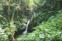 monteverde cloud forest reserve waterfall 
