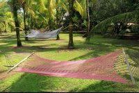 turtle beach lodge hammocks 