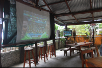 projector screen loqhay 