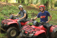 fourtrax twins 
