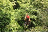 flight of the toucan tree climb combo tour canopy 
