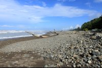 surf shak beach 