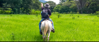 horseback riding in flat land  - Costa Rica