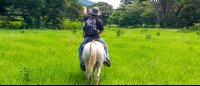horseback riding in flat land