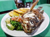 whole fish front view perla del sur restaurant
