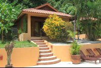 ritmo tropical hotel poolside bungalow