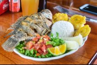 whole tilapia with patacones boild cassava rice and salad lunch waterfall tour manuel antonio