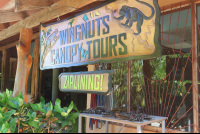 wingnuts canopy tours entrance 