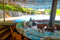 borrancho poolbar 