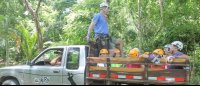 truck ride up the hill to start canopy mal pais