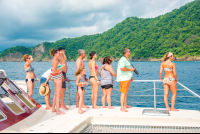 tourists watching turtles matting from the marlin del ray catamaran
