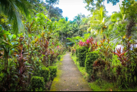 manglares hotel pathways