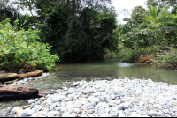 pinuelas beach attraction stream 