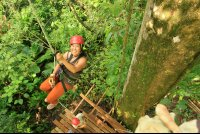flight of the toucan tree climb combo tour climbing 