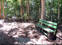 A park bench on the trail beside Espadilla Sur Beach