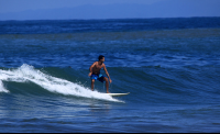 jaco surf lesson surfing 