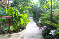 hotel pathways