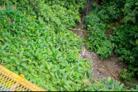 a lady at the bottom of the canyon in the tarzan swing los canones canopy tour la fortuna
