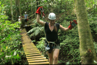 A visitor walks across the monkey bridge on the jungle adventure tour