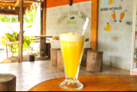 pine apple smoothie delicias bahia drake
