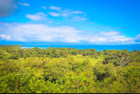 view of golfo dulce from rancho tropical