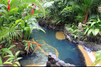 tabacon pool in shan gri la 