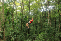 evergreen lodge canopy tour 
