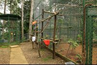 osa animal sanctuary tour page enclosures 
