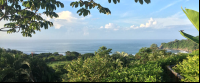 panoramic punta islita 