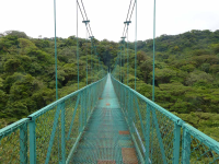 selvetura hanging bridges   - Costa Rica