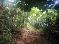 biesandz beach trail 
