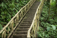step trail to celeteste river waterfall