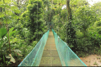 la foresta nature resort trails 