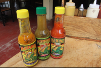 hot sauces giled iguana