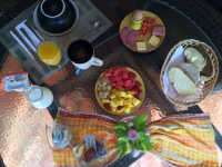 breakfast samara palm lodge   - Costa Rica