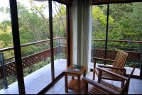 ficus delux rooms views 