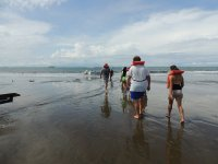 ballena aventura tour walking 