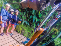 arrival at the first platform inside the canyon at the white river canyon zip line rincon de la vieja