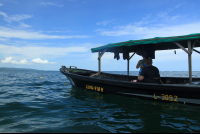cahuita national park snorkeling hiking tour boat  