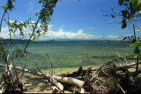 cahuita national park attraction page coast 